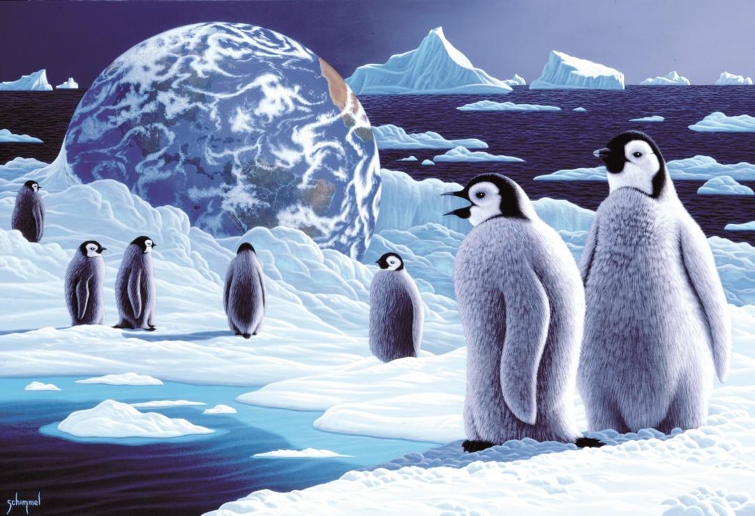 pieces-xxl-schim-schimmel-antarctica-s-children