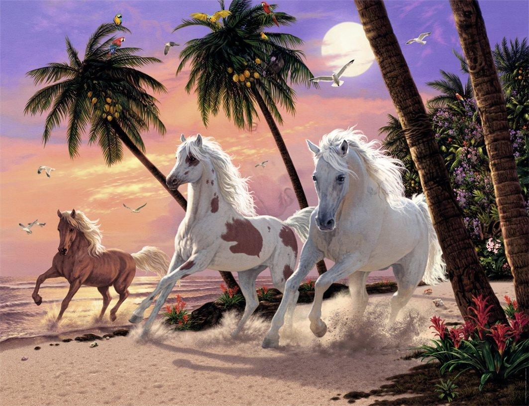chevaux-du-crepuscule