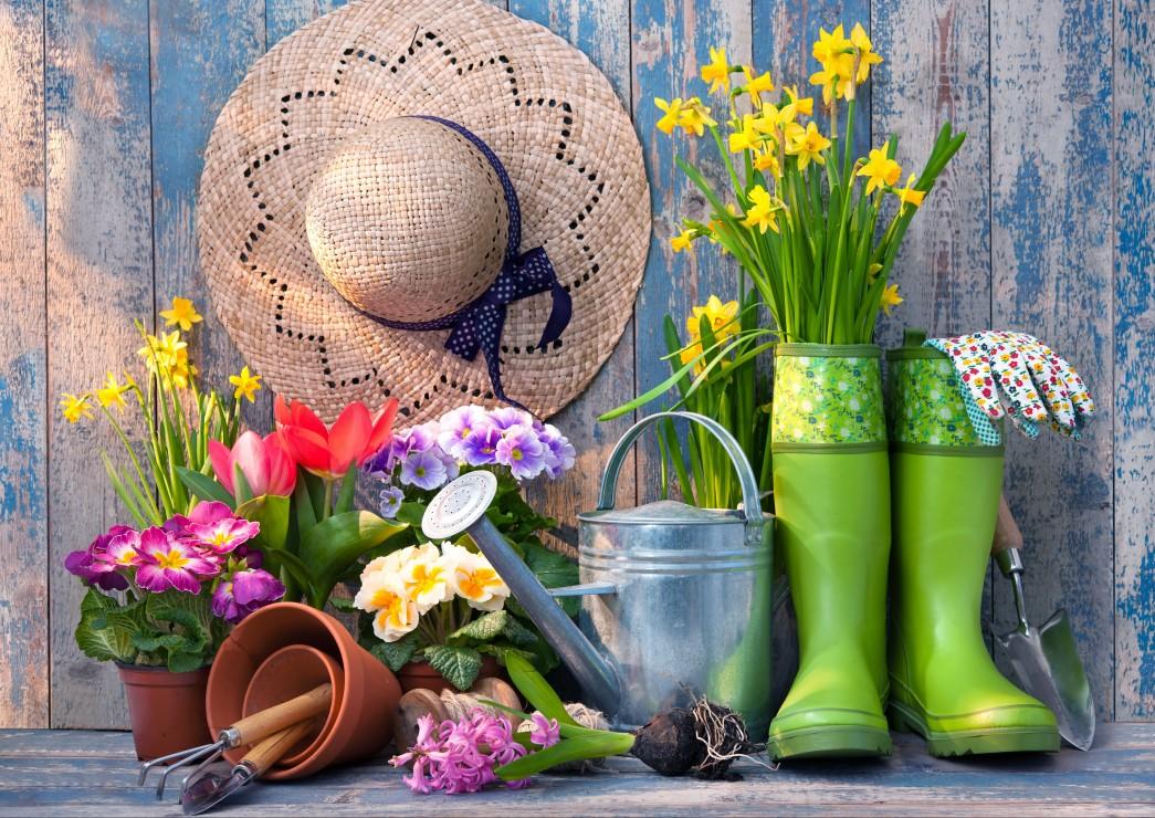 ready-for-the-garden