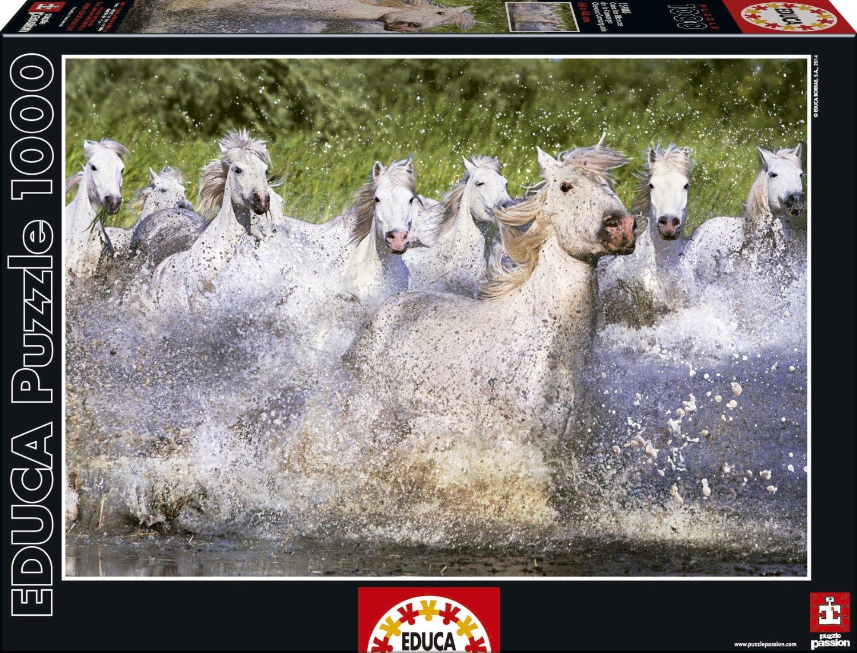 chevaux-camarguais