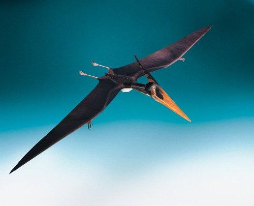dinosaure-pteranodon