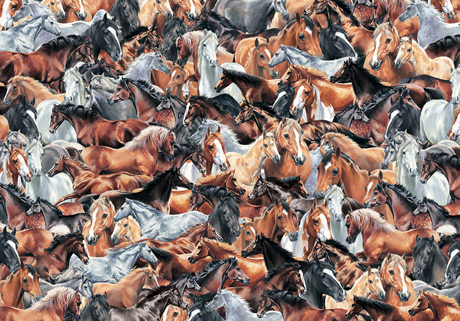 impossible-puzzle-horses