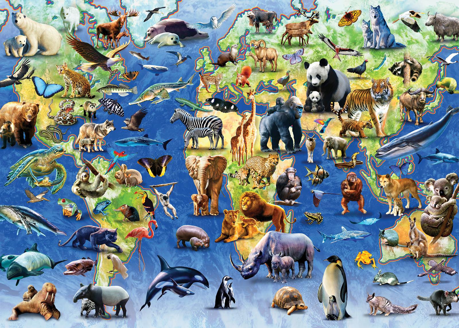 endangered-animals, 14.95 EUR @ go