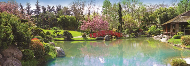 jardin-colore