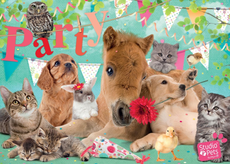 studio-pets-happy-birthday