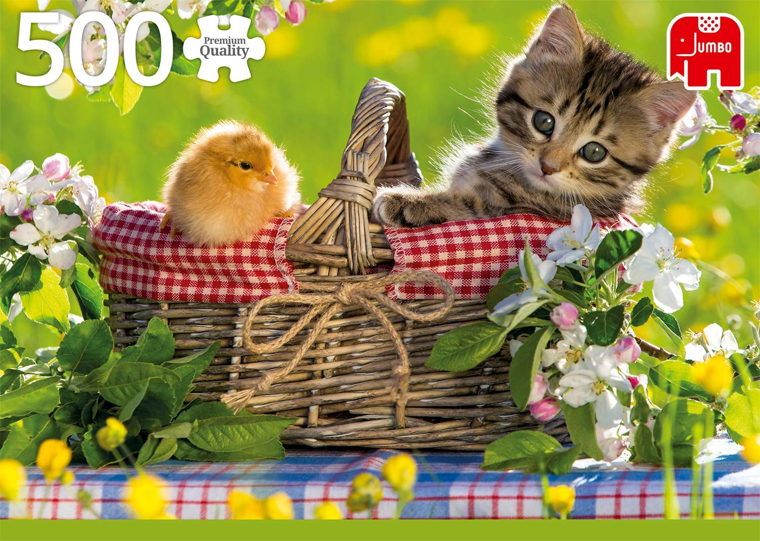 ready-for-a-picnic