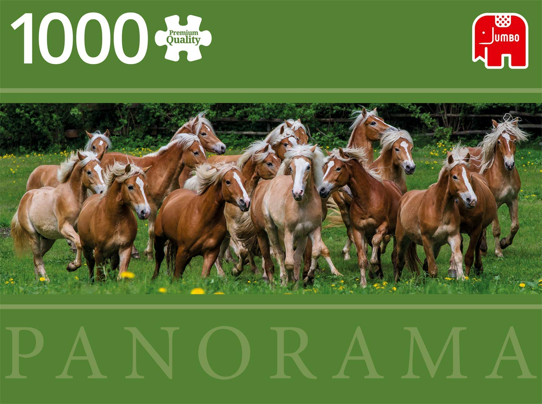 haflinger-horses