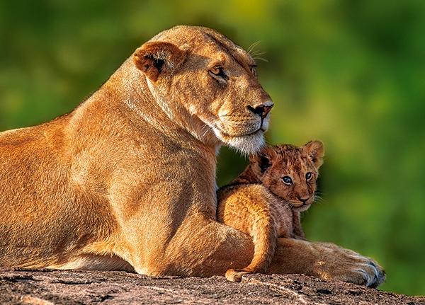 mom-and-me