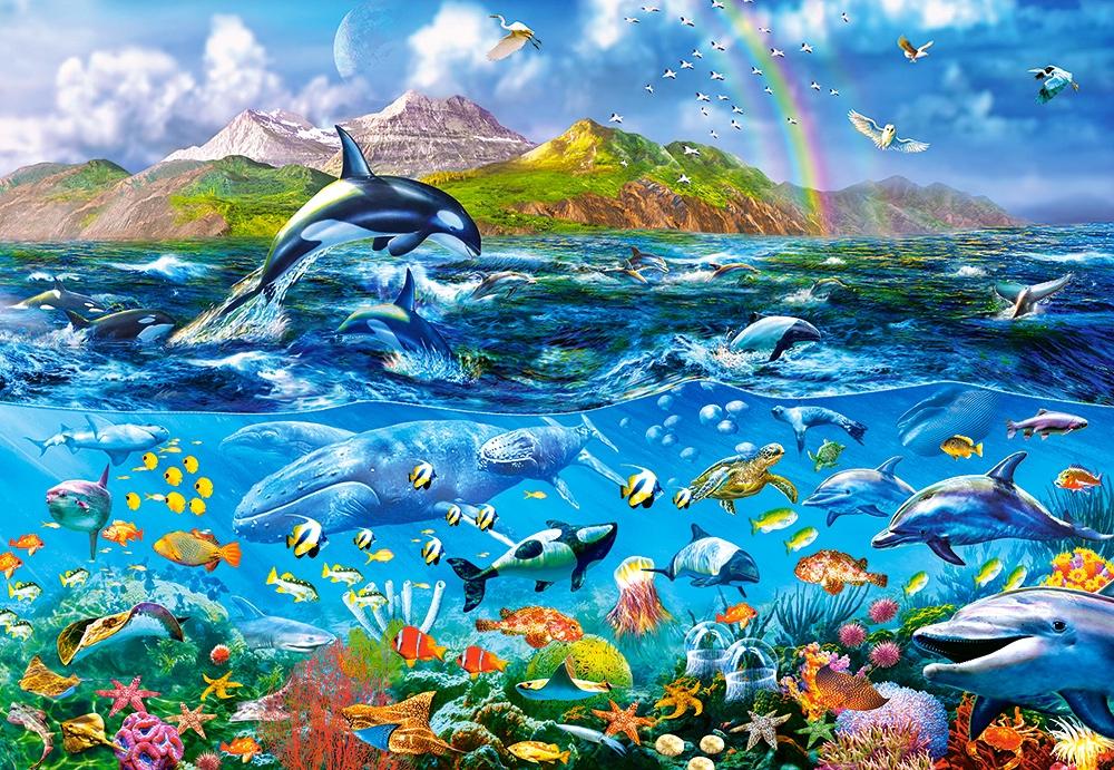 ocean-panorama