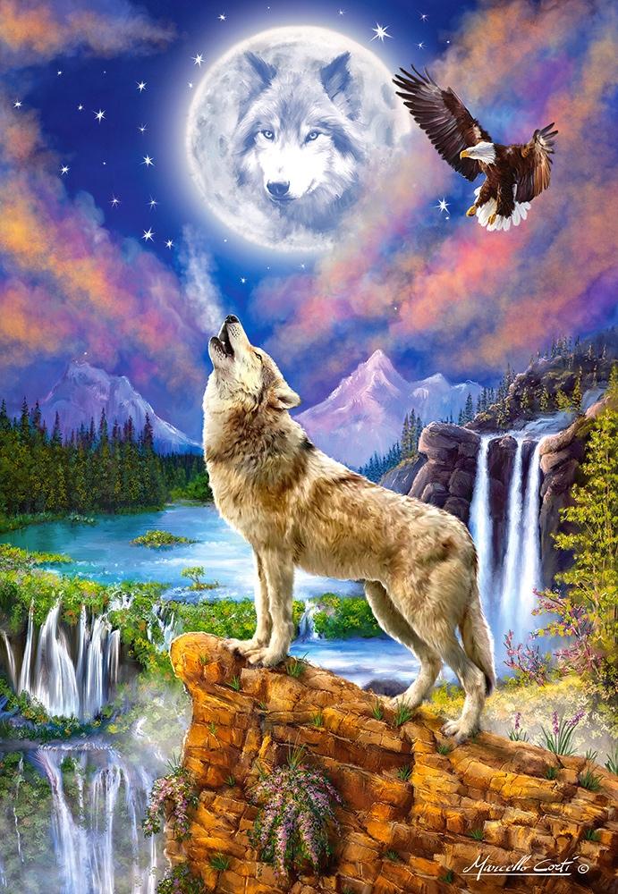 wolf-s-night, 11.95 EUR @ go