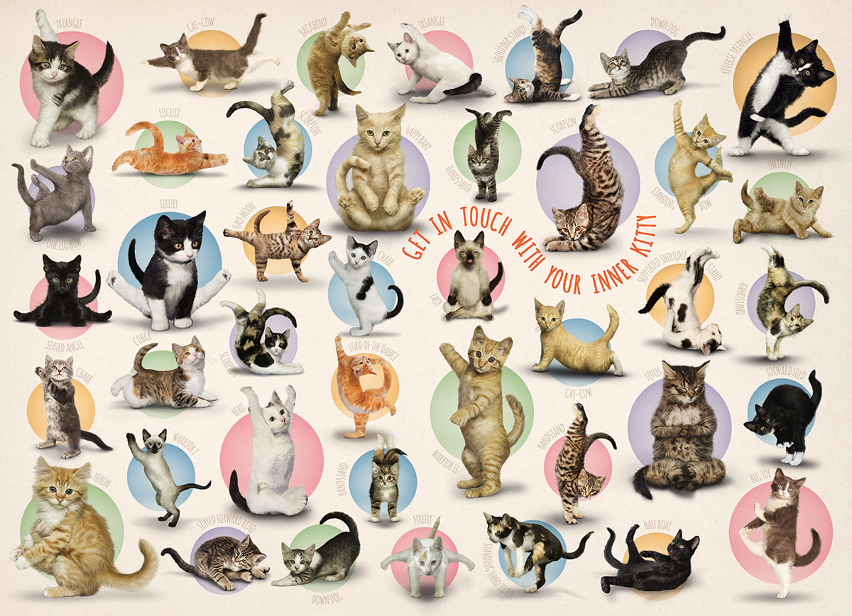 pieces-xxl-familiy-puzzle-yoga-kittens