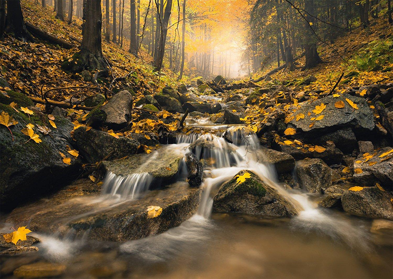 stefan-hefele-ruisseau-magique