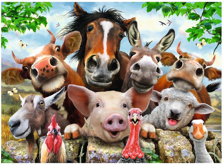 pieces-xxl-selfies-des-animaux-de-la-ferme