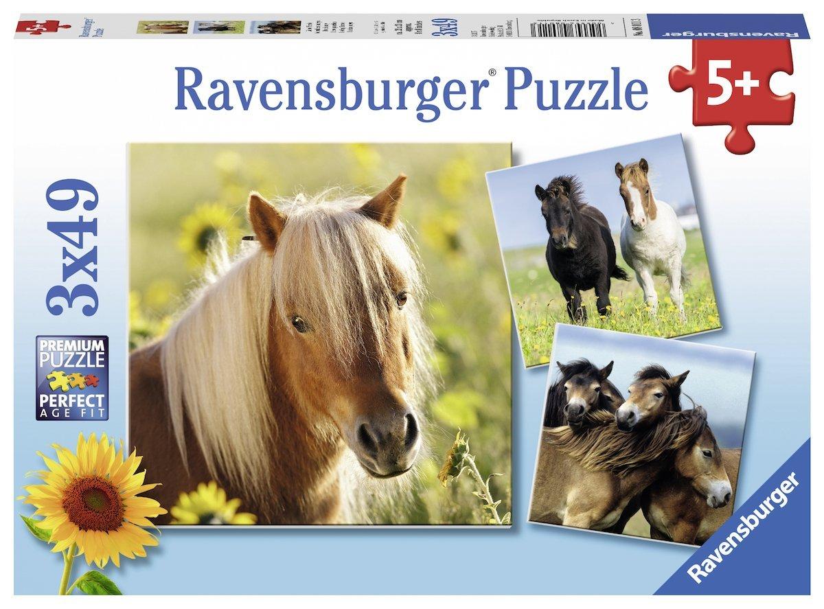 3-puzzles-chevaux
