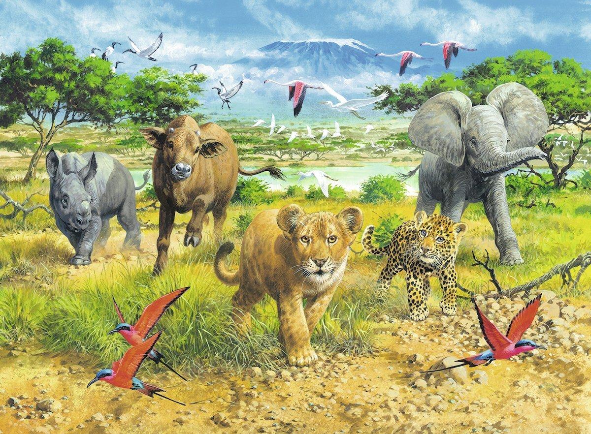 bebes-animaux-d-afrique