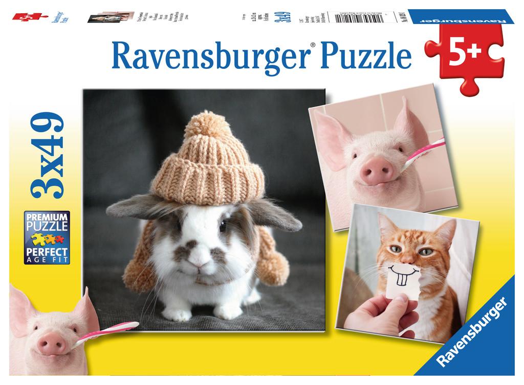3-puzzles-portraits-droles-d-animaux