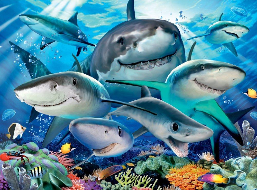 pieces-xxl-requins-rieurs