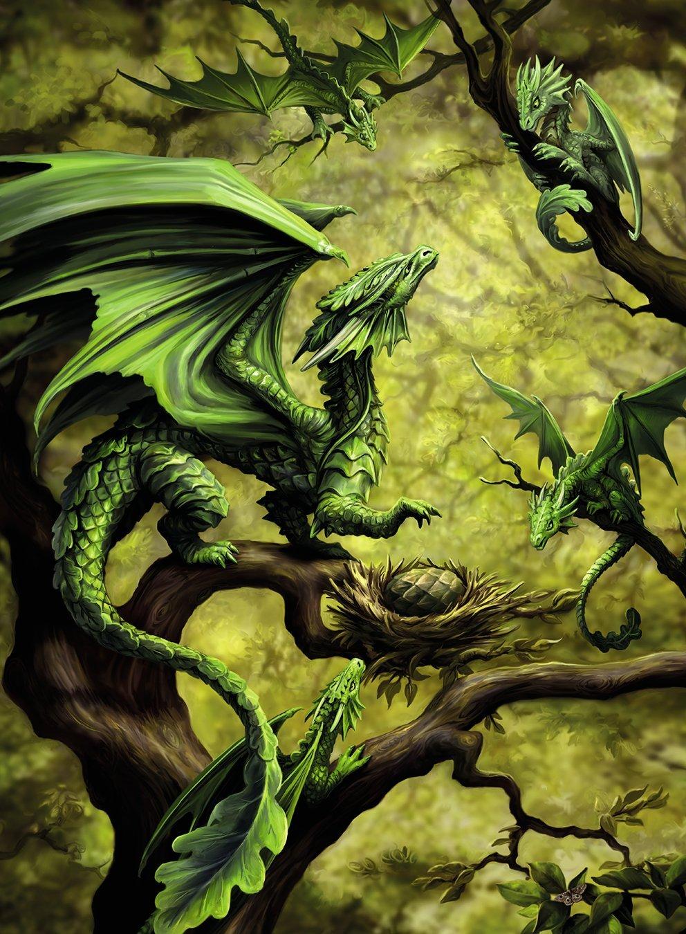 dragon-de-la-foret-par-anne-stokes