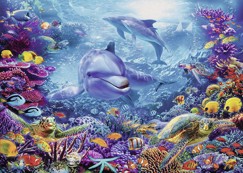 magnifique-monde-sous-marin