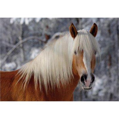 puzzle-special-difficile-cheval-haflinger-n-1