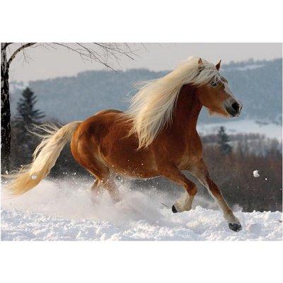 puzzle-special-difficile-cheval-haflinger-n-2