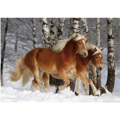 puzzle-special-difficile-cheval-haflinger-n-3