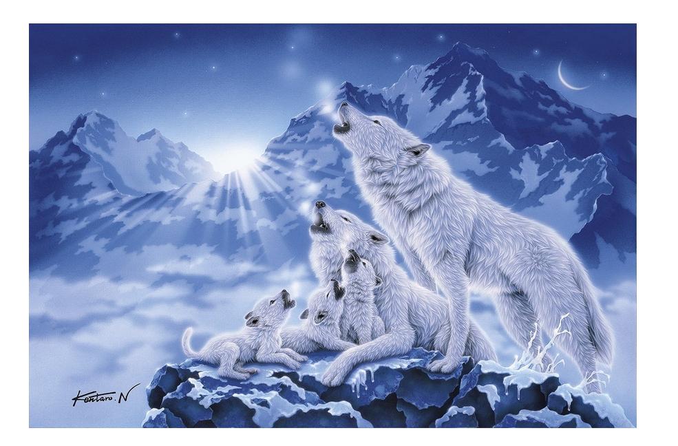 famille-de-loups