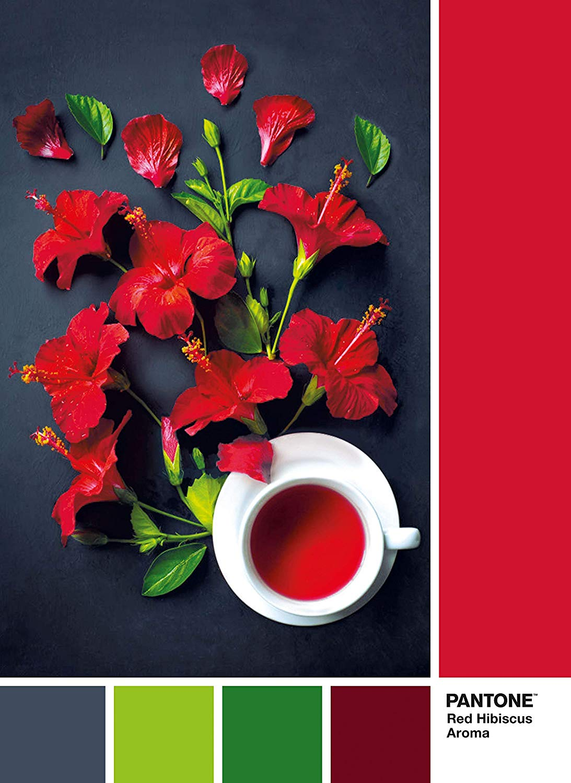 pantone-goji-berry