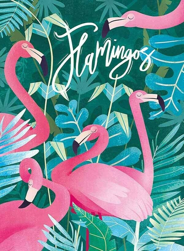 fantastic-animals-flamingos