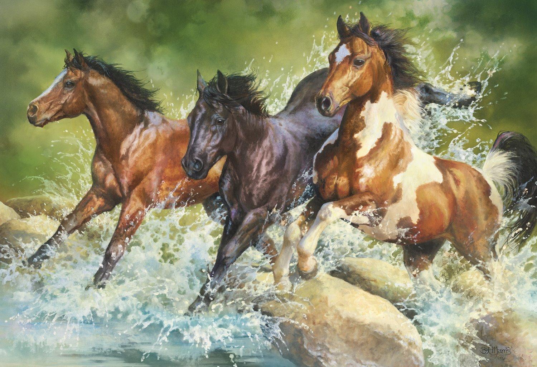 three-wild-horses