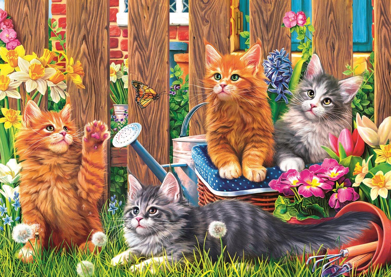 petits-chatons-dans-le-jardin