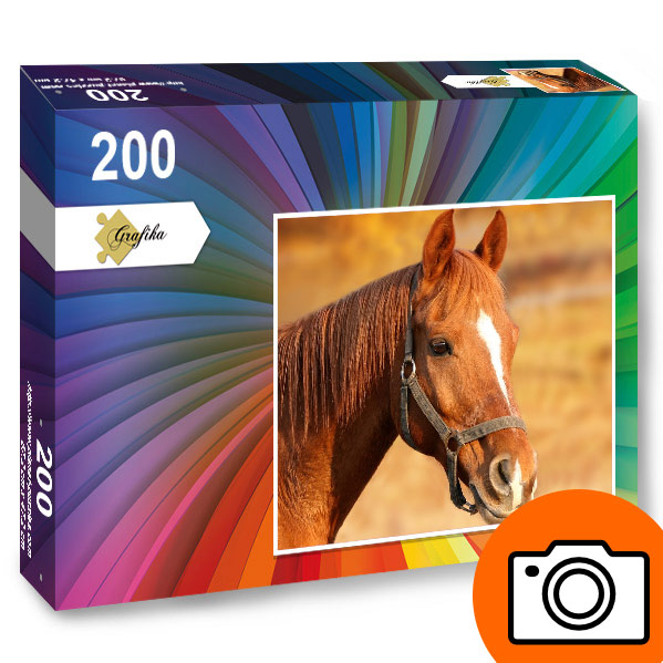 puzzle-photo-personnalise-200-pieces