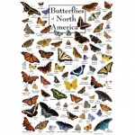 Master-Pieces-71971 Butterflies of North America