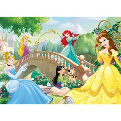 Nathan-86567 Disney Princesses