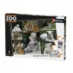 Nathan-86838 Une Saison au Zoo