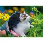 Nathan-86876 Petit Chaton Curieux