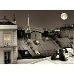 Nathan-87106 Sur les Toits de Paris