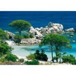 Nathan-87459 Plage de Palombaggia / Corse du Sud
