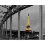 Nathan-87469 Paris by Night