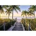 Nathan-87547 Plage de Floride