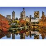 Nathan-87788 New York en Automne