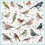 Otter-House-Puzzle-71358 Madeleine Floyd Birdsong