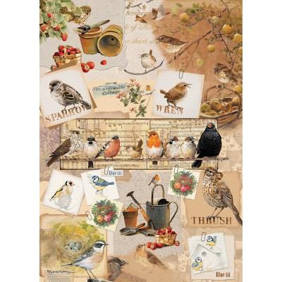Otter-House-Puzzle-72633 Garden Birds