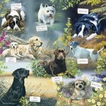 Otter-House-Puzzle-74126 Man's Best Friend