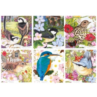 Otter-House-Puzzle-75079 RSPB - Garden Birds