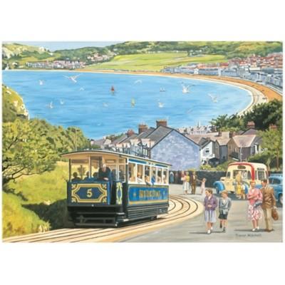 Otter-House-Puzzle-75081 Seaside