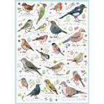 Otter-House-Puzzle-75087 Birdsong