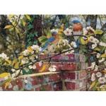 Cobble-Hill-51845 Jay Kemp: Backyard Blues