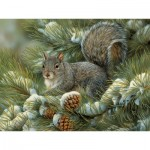 Cobble-Hill-54348 Pièces XXL - Rosemary Millette - Gray Squirrel
