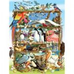Cobble-Hill-54581 Laura L Seeley : Oiseaux du Monde
